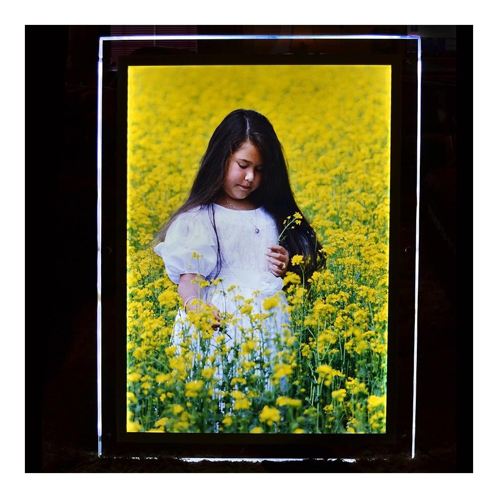 Trykk av plakat på backlit film til lyskilt